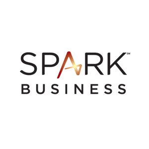 Website age verification for Spark