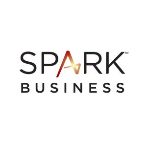 Website age verification for Spark