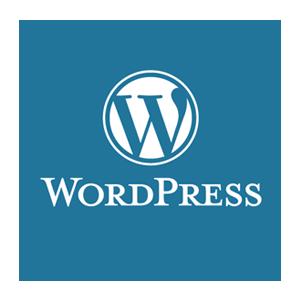 Website age verification for WordPress